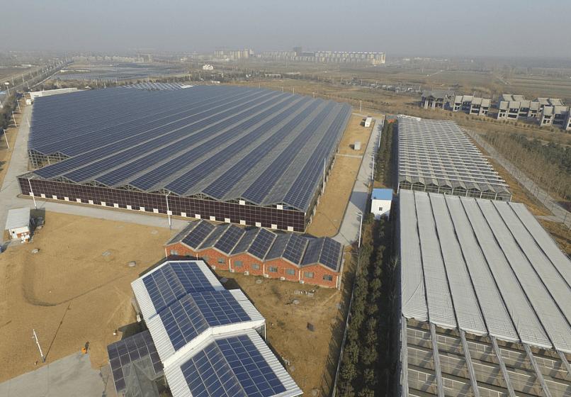 富士康中牟農光互補太陽能發電項目