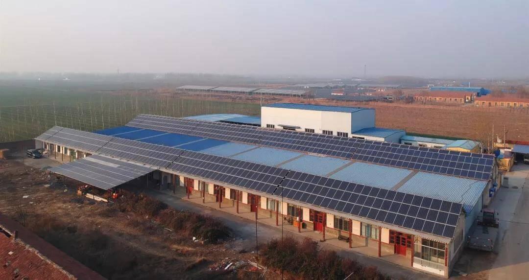山東淄博高青常家鎮猛龍威酒廠太陽能發電項目